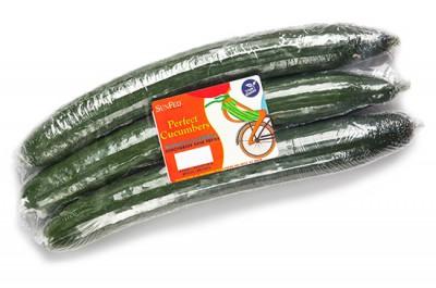 product_english-cucumber