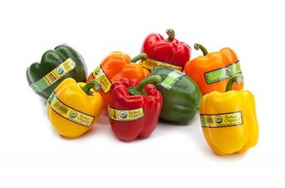 Organic Bell Pepper