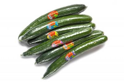 Organic English Cucumber