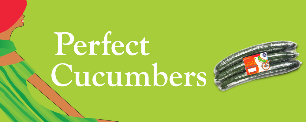 Organic English Cucumber Header