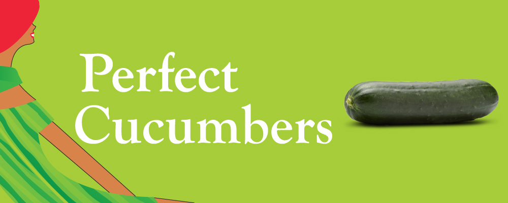 Organic Slicer Cucumber